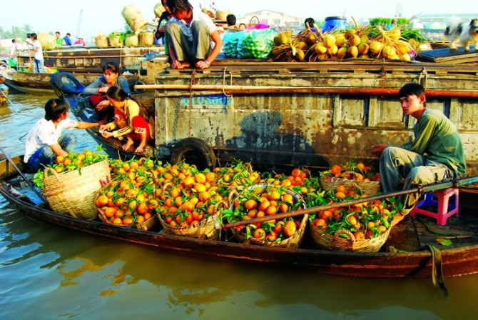 58605973 - MEKONG DELTA PRIVATE TOUR